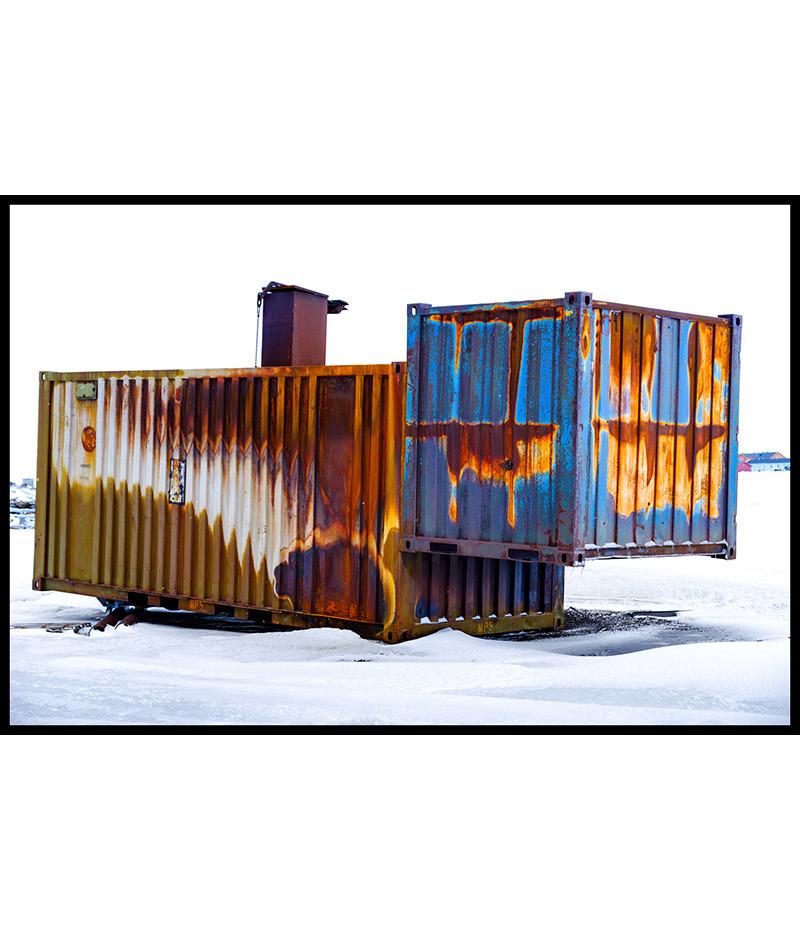 Le chat du Svalbard